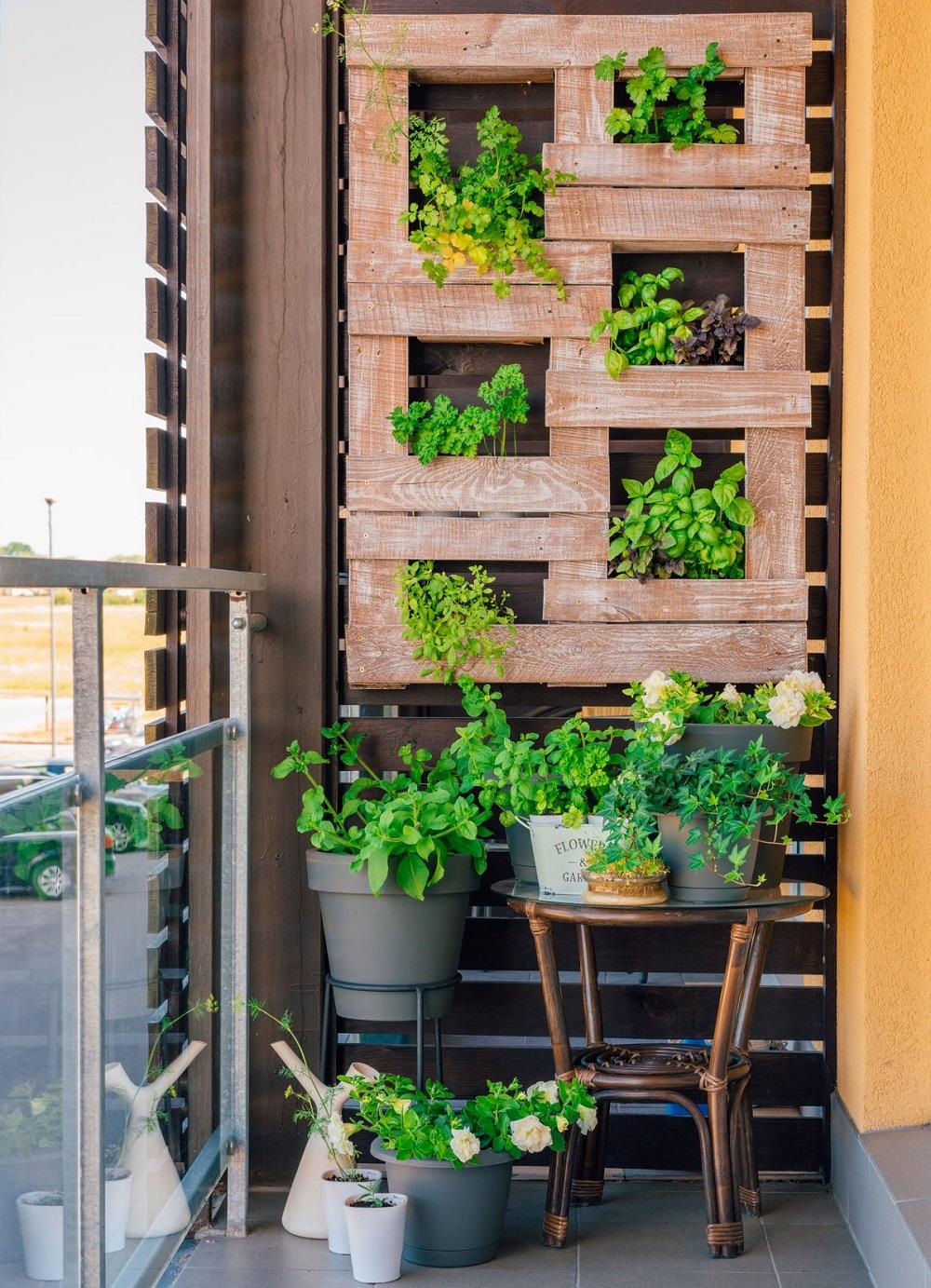 Horta suspensa na varanda