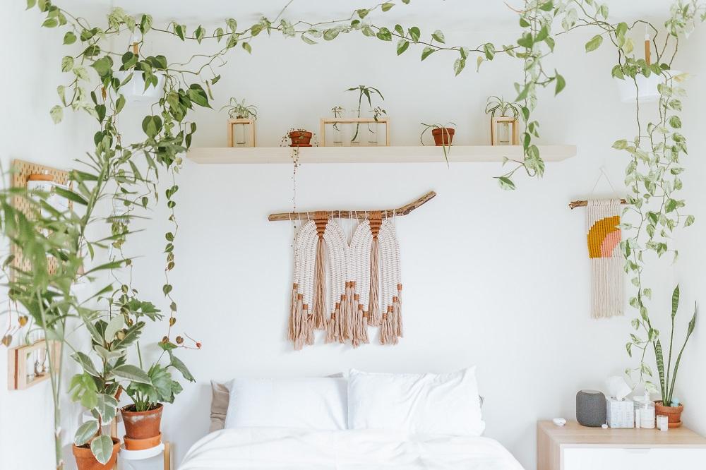 Plantas no quarto: quais escolher e como usá-las na decoração
